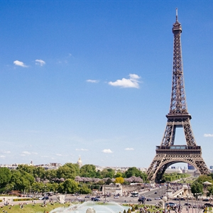 FACT Update: Join Us in Paris for the Cord Blood Inspection and Accreditation Workshop, and More